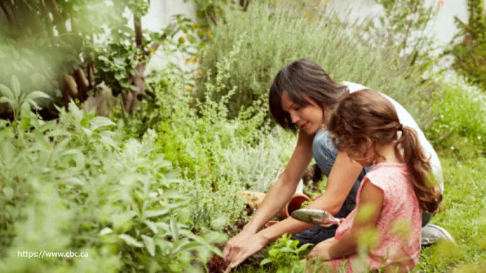 What To Plant In Your Summer Vegetable Garden