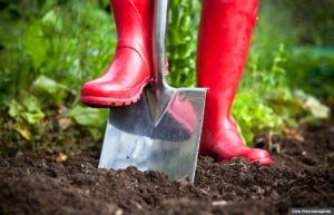 Tips on Getting Ready For Gardening Season