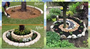 Landscaping DIY For a Gorgeous Garden