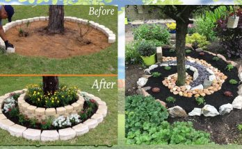 Landscaping DIY For a Gorgeous Garden