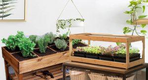 Functional and Attractive Herb Garden Designs